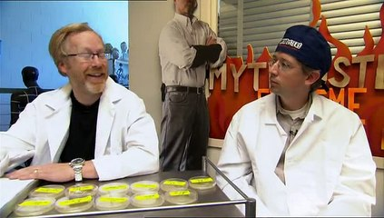 Mythbusters | Dirtier Than A Toilet Seat