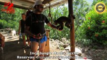 Inca Jungle to Machu Picchu with Enjoy Peru Holidays