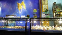 Amsterdam's Smart Shops - Everything you need to know about Magic Mushrooms and More!