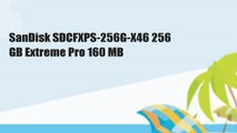 SanDisk SDCFXPS-256G-X46 256 GB Extreme Pro 160 MB