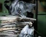 Kuklachev cats work / Whiskas comercial (1)