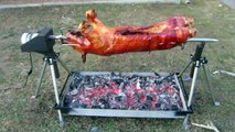 Whole Hog Rotisserie Spit by PigOut Roasters