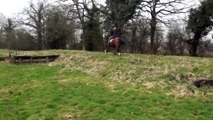 Sonnet first time XC - 2010 mare for sale