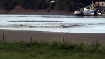 The Mighty Severn Bore Gloucester Uk