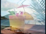 Rupert Holmes - (Escape) The Pina Colada Song (Lyrics)