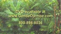 Gentle Djembe for Beginners 1: Djembe lessons DVD