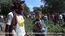 """LES FAUCHEURS VOLONTAIRES D'OGM // PRIX """"CITOYEN RADICAL"""" JAAP KRUITHOF"""
