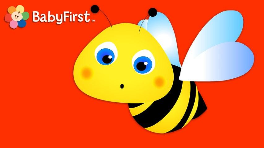 Des Chiffres Autour du Monde: cinq abeilles