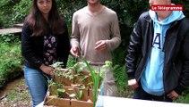 Plomelin (29). Foire de l'eau : au bonheur des enfants au lycée de Kerbernez