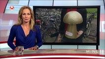 Huisjesmelker van het jaar 2012: Emmy van der Tol (Hart van Nederland, 2012-05-31 19:00)