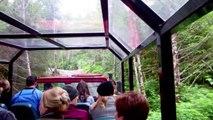 Ziplining in Ketchikan Alaska with Alaska Canopy Adventures and Disney Wonder