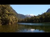 Fly Fishing New Zealand Fly casting  Catches Trout