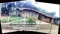 CONNAISSEZ-VOUS MON BEAU VILLAGE? SIBITI (CONGO-BRAZZAVILLE)