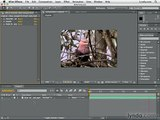 Adobe After Effects CS4 Tutorial 100 - Stabilizing