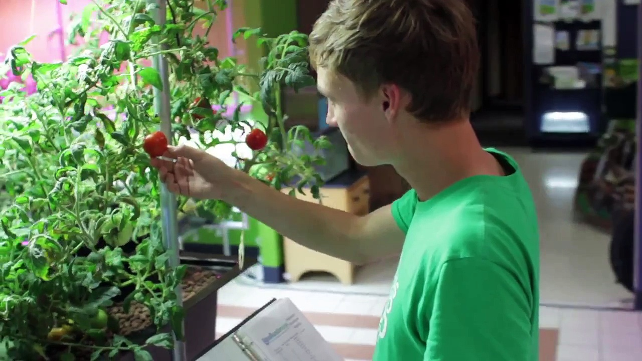 AquaSprouts – Aquarium Aquaponic Garden on Kickstarter