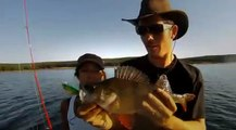 Roussillon Fishing - Pêche des carnassiers Brochet, Sandre, Silure, Perche, Black Bass, Truite