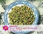 Cách làm giá đỗ xanh, đậu xanh Sạch Tại nhà Đơn giản và mập nhất http-__www.maylamgiado.com.vn