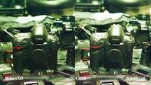 Nikon Df vs D4 - D4 Sensor in a Smaller Body?