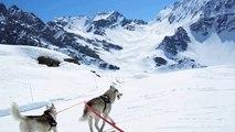 descente en yooner avec deux Huskies (30)
