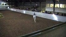 Pacific Rim Arabian Horse Show - Walk Trot Equitation