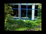 Studieren an der Universität Ulm * study at ulm university