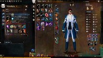 Guild Wars 2 PvE Engineer Build: Healing Bombs