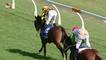Un jockey perd son pantalon en pleine course (Australie)