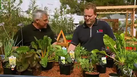 Greenfingers and Aquaponics WA at the Perth Royal Show Part 2