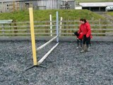 JUMPING from the 5ft jumping dog MUST WATCH!