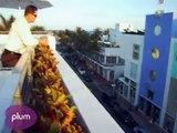 Best Drinks with a View in Miami Beach: Plum Picks