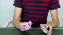 [Magic Tricks] Cool Card Magic Tricks Revealed - Magic Tricks revealed