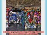 Graffiti Wall 10' x 10' CP Backdrop Computer Printed Scenic Background GladsBuy Backdrop DGX-006