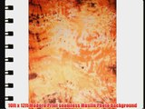 Studiohut 10' X 12' Fantasy Painted Muslin Photo Video Backdrop/Background (A5232_1012)