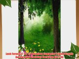 Lush Forests 5' x 7' CP Backdrop Computer Printed Scenic Background GladsBuy Backdrop XLX-249