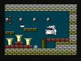 CJM Super Mario Bros 2 last boss + ending