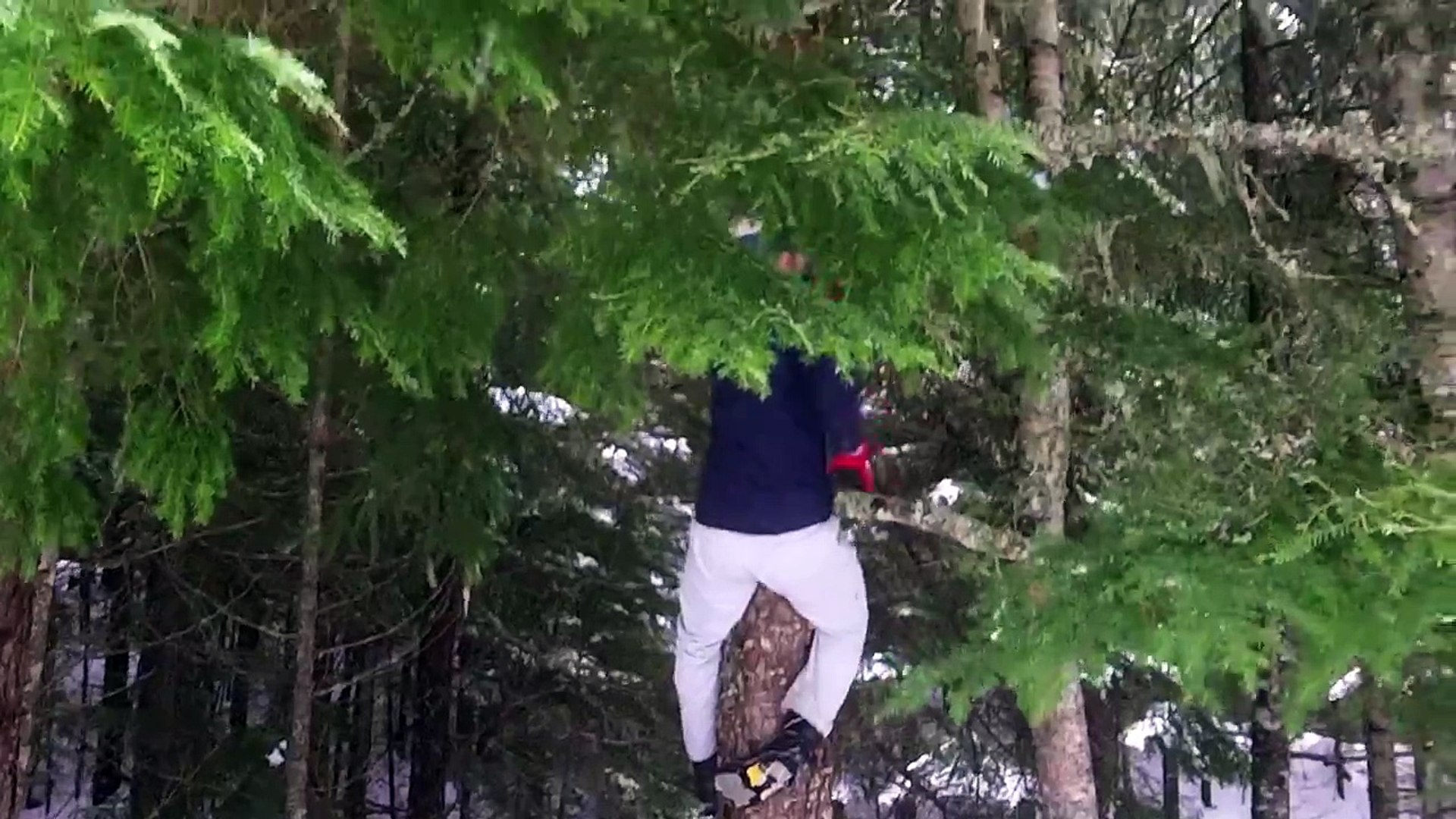 I fell 30 feet from a tree and didn't catch it on camera... heres what i did catch.