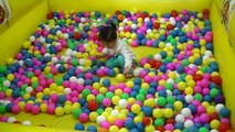 "Indoor playground Fun Cool Her favorite 'ballpit' "" whack-a-mole ""Ball Pitt ball pit door"