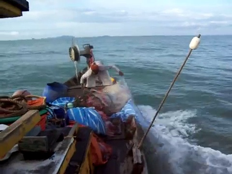 Boat, nets, prawns and fishes