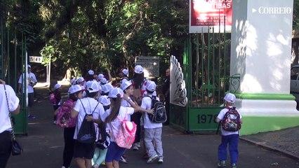 Crianças fazem ação contra dengue no Bosque dos Jequitibás