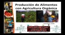 Producción de alimentos con agricultura orgánica