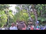 Indiana Jones Adventure ride at Disneyland - HDThrillSeeker