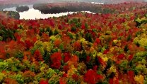 Planet Earth- Amazing nature scenery, funny videos, amazing videos,entertainment videos,