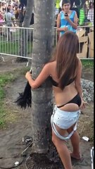 Girl At Ultra Music Festival Kisses A Tree (High Definition)