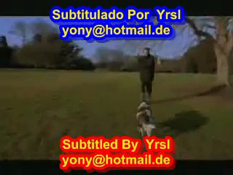 Sting - Shape Of My Heart ( SUBTITULADO INGLES ESPAÑOL )