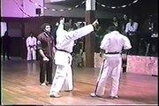 Kung Fu vs Karate - K O - video dailymotion