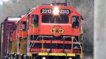 (HD) PW 2313 freight train crossing at  Roberts, Oregon
