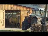 Pferdezentrum Fister in Bilsen - Teil 1/3