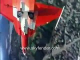 Northrop F-5 Tiger Fighter Jet Aircraft.wmv