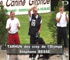 Tarhun Des Crocs De l'Olympe - [Berger Hollandais- Dutch Shepherd] - Finale Ring Merignac 2006