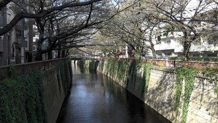 Tokyo Naka Meguro